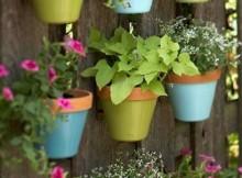 giardino verticale con i vasi