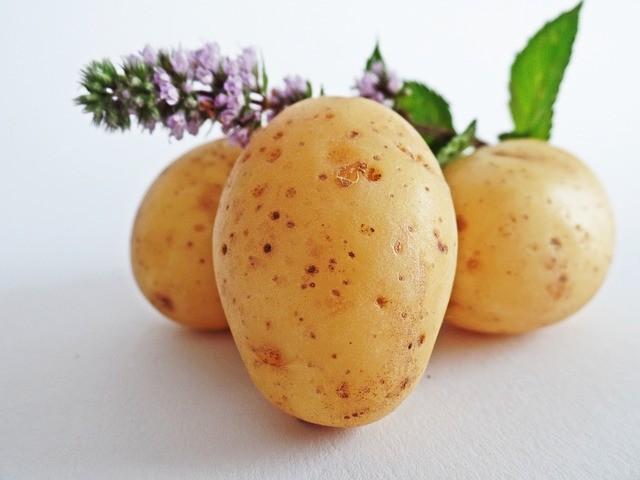 come coltivare patate